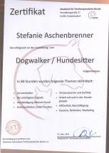 Zertifikat Hundesitter - Dogwalker