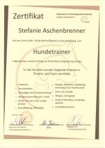 Zertifikat Hundetrainer